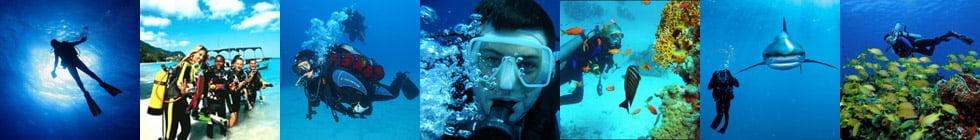 Как правильно пишется слово «аквалангист»?