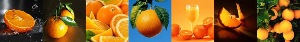 Как правильно пишется слово «апельсин»?