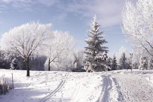 Январский