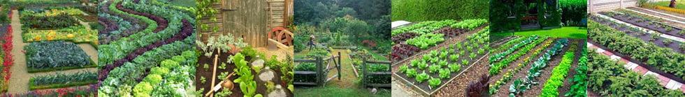 мини огород как пишется
